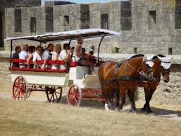 Carcassonne carriage